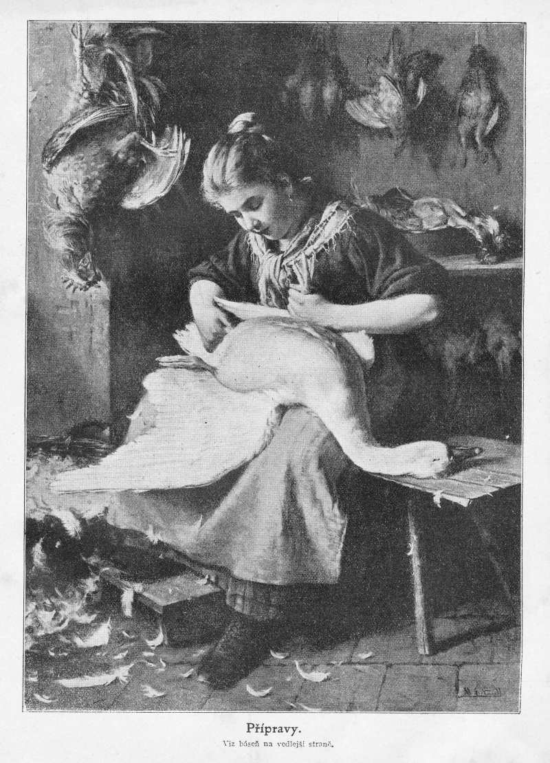 MALY_CTENAR_29.rocnik_(1909-10(_cislo_20